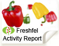 Freshfel Activity Report