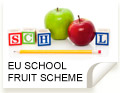 Freshfel position on the European School Fruit Scheme
